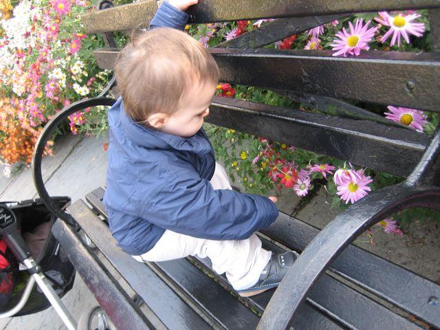2009-10-25-CentralPark - 11