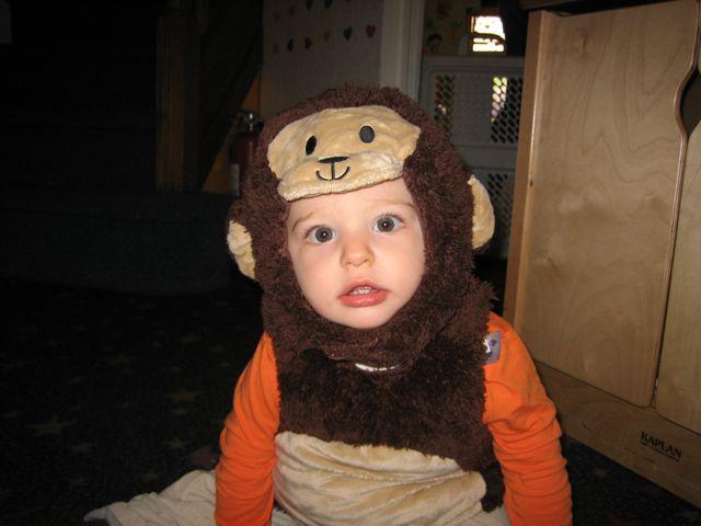 2009-10-30-Monkeys - 2