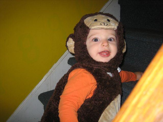 2009-10-30-Monkeys - 4